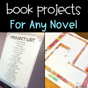 Book Projects for All Novels